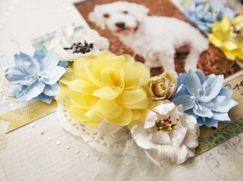 Alicia Barry, Pretty Puppy, Free choice, close up 1